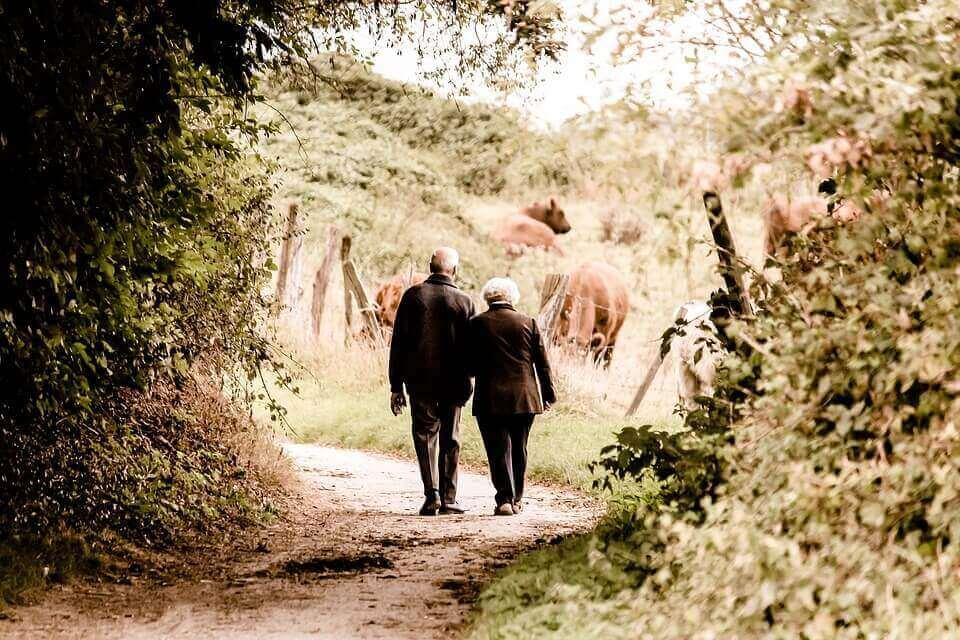조부모들로부터의 집단적 기억과 이야기들