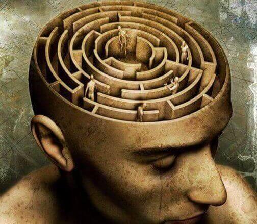 생리적 심리학