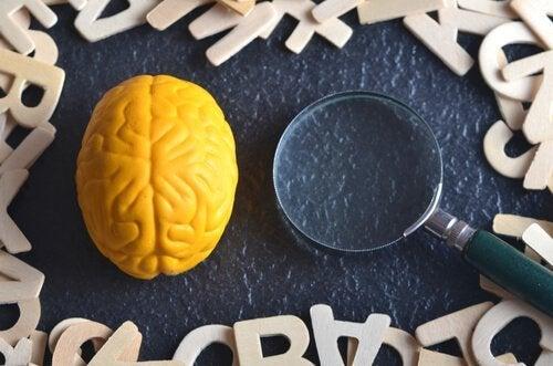 실험 심리학이란 무엇인가?