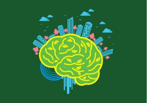 두뇌 신경 구조: 두뇌에 끼치는 환경의 힘