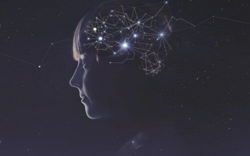 뇌의 가소성