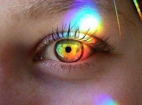 빛나는 눈