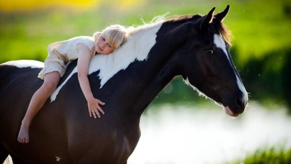 말 매개 치료의 6가지 이점 03