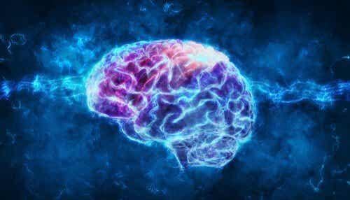 정신 생리학: 무엇일까?