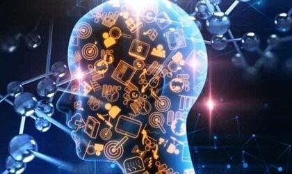 스위스 아미 나이프 이론: 정신의 모듈방식