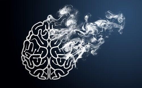 니코틴 담배 연기 속에 망가지는 뇌