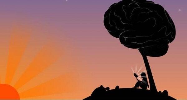 지능과 지혜의 5가지 중요한 차이점