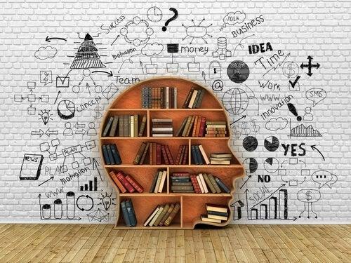 독서 치료의 효과 : 책을 통한 치유