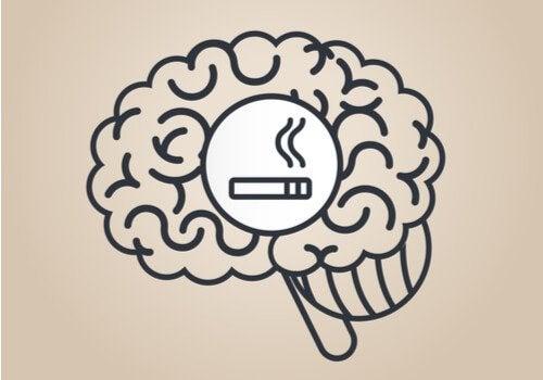 니코틴이 두뇌에 영향을 미치는 방법