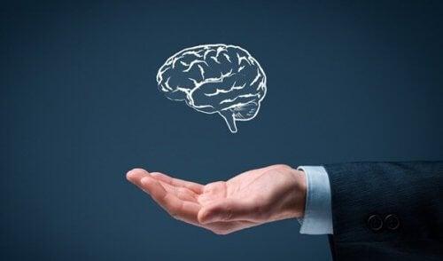 단일 지능의 6가지 규칙
