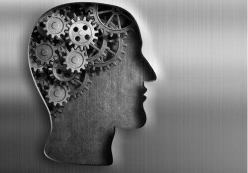 데이비드 흄의 이야기: 머리 기계