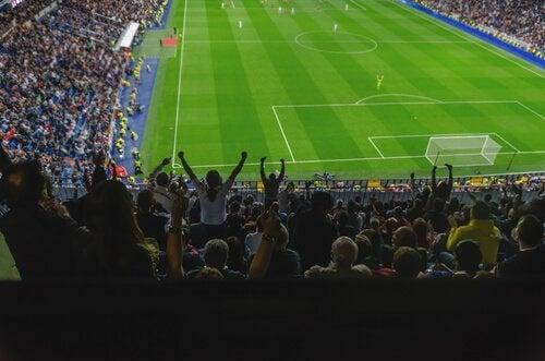 축구 폭력 경기장 환호하는 팬들
