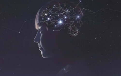 비타민 C 뇌별자리