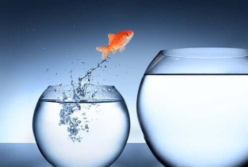 아이의 확산적 사고와 잠재력을 어항 속 물고기를 통해 보여주는 사진