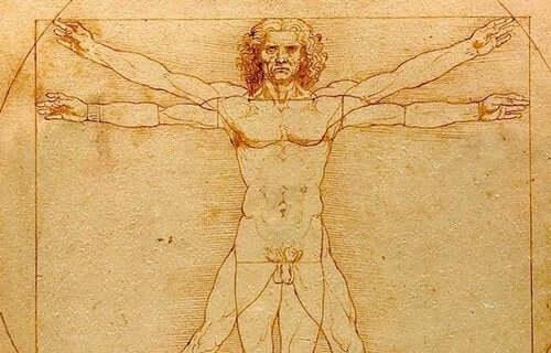 레오나르도 다 빈치: 남성 신체 스케치