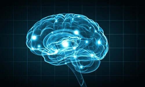 생리 심리학의 연구 방법