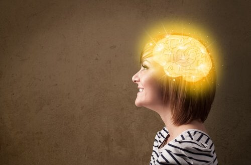 """우리 뇌에는 """"행복의 영역""""이 있을까?"""