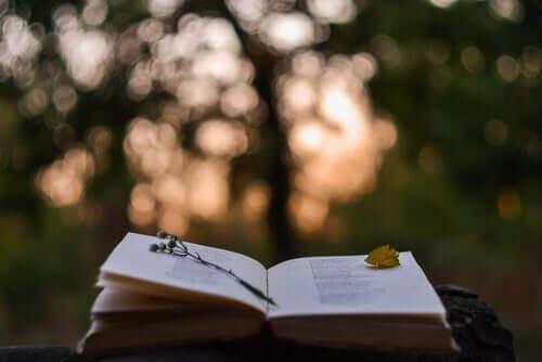 펼쳐진 책2