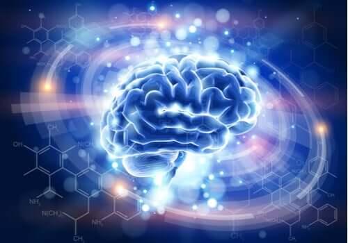 엔케팔린: 고통을 감소시키는 신경전달물질