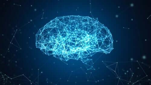 블루 브레인 프로젝트: 뇌의 재건