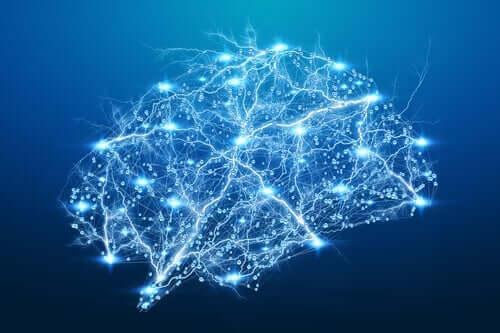 빛나는 뇌