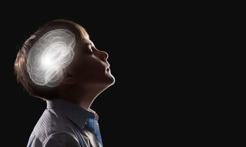 직관 신경생물학 - 생각하는 아이와 두뇌 모습
