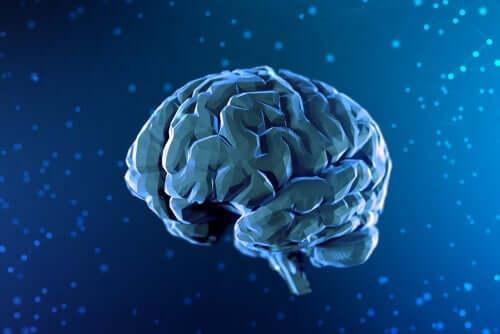 디지털 뇌 그림