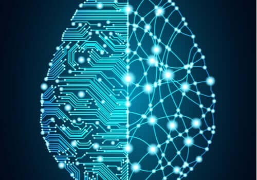 위에서 보는 전자 뇌