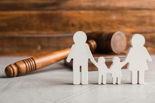 법적 측면으로 알아보는 공동 양육권