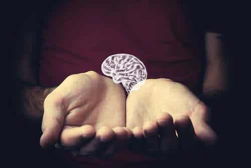차등 역학: 정신과 수명의 관계