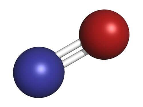 산화질소: 놀라운 기체 신경전달물질