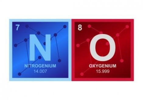 산화질소 2