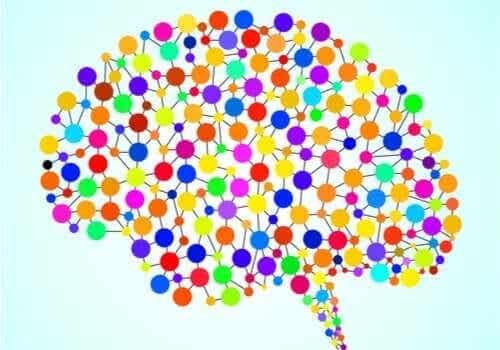 과거에는 알려지지 않았던 97개의 뇌 영역