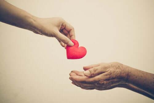 사랑을 나눠주기