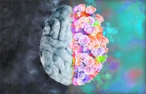 신경 미학: 신경과 예술이 만나는 곳