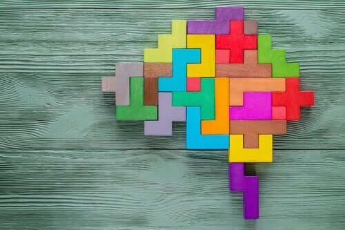 정신병리학 창의성 - 두뇌 2