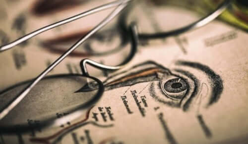 옵토그래피: 섬뜩한 19세기의 과학