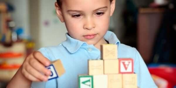 3. 아이의 특별한 관심사에 시간을 쏟아붓자