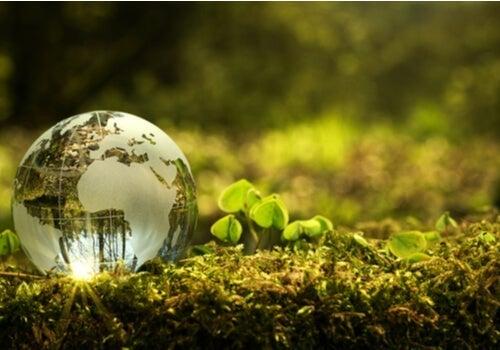 지역 사회의 환경 개선에 기여하는 방법