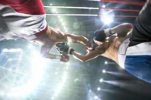 권투 선수 치매 혹은 복서 치매