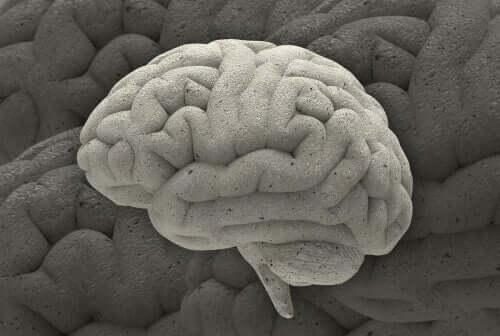 매혹적인 신경과학 사례 세 가지