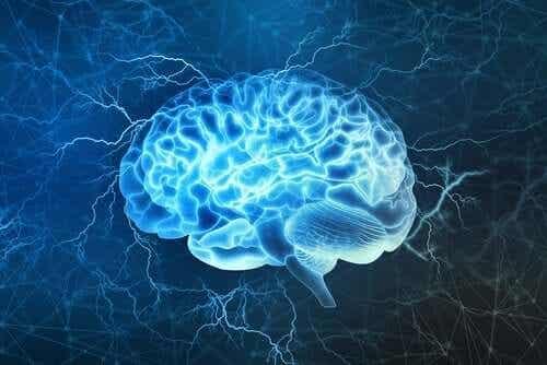 코로나바이러스의 신경학적 효과: 최근의 발견