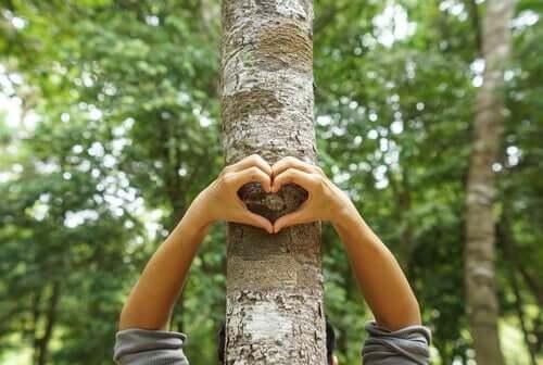 지역 사회의 환경 개선에 기여하는 방법 - 하트 모양 손