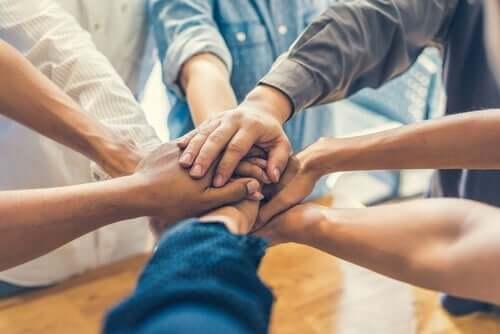 집단 응집력: 응집력과 성과의 관계