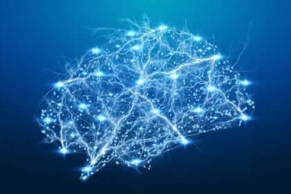 흥미로운 신경과학 사례 세 가지
