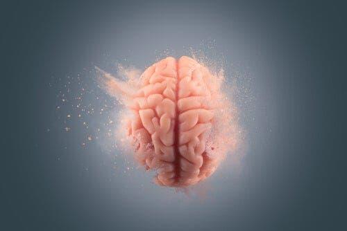 코카인이 뇌에 미치는 영향을 알아보자