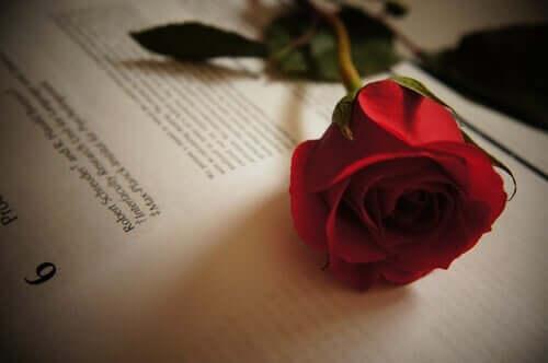 티르소 데 몰리나의 사랑에 관한 인용문 5가지