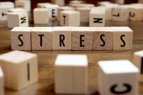 만성적 스트레스 및 점진적 기억 상실