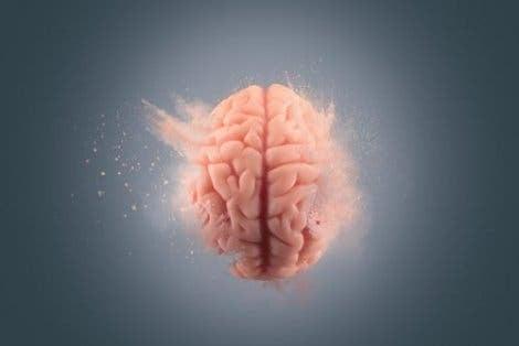 왜 잊어버리는 것이 기억하는 것보다 뇌에 더 복잡한가?