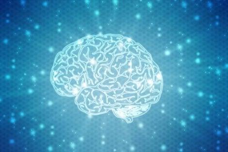 신경심리학적 재활과 관련된 부상 변수
